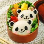 幼稚園お弁当のレシピを大公開!可愛いお弁当にするために
