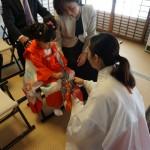 芦屋神社で七五三と安産祈願